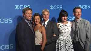 Co-Stars Defend Michael Weatherly [Video]