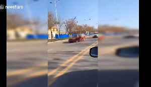 Runaway horse gallops head-on into a BMW [Video]