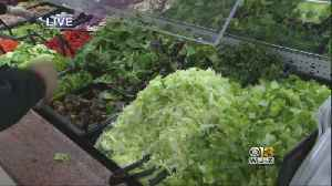 Romaine Recall Extends To Other Kinds Of Lettuce, Cauilflower [Video]
