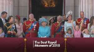 Royal Family Highlights of 2018 [Video]