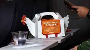 Popeyes Debuts 'Emotional Support Chicken' For Holiday Travel Stress Management [Video]