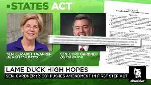 GOP Sen. Cory Gardner Proposes States' Rights Approach to Cannabis Law [Video]