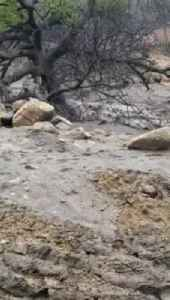 Amy Shooting Flooding in Fire Ravaged California Just Before Christmas [Video]