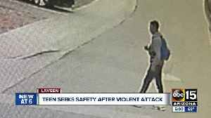Teen attacked and robbed on way home from school in Laveen [Video]