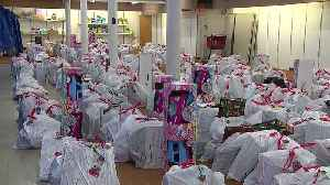 Illinois Woman Gives Christmas Presents to Hundreds of Kids [Video]