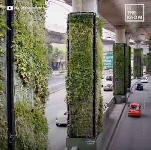 Mexico City highways covered in green to improve air quality [Video]