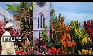 Chelsea Flower Show at 100 [Video]