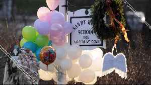 The Mental Downfall of Adam Lanza [Video]