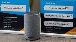 How Big Will Alexa Business Be In 2021? [Video]