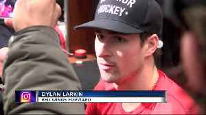 Red Wings cite 'playoff atmosphere' for uptick in fights [Video]