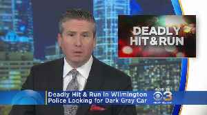 Deadly Hit-And-Run In Wilmington: Police [Video]