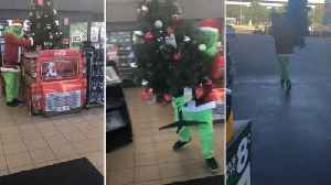 Half grinched: Prankster dressed as the Grinch steals christmas tree from petrol station [Video]