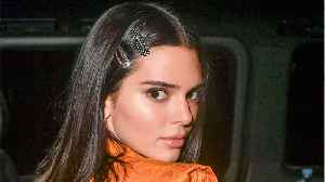 Kendall Jenner Wore $5,022 Gown While Sledding [Video]