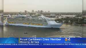 Coast Guard Searching For Missing Cruise Ship Member [Video]