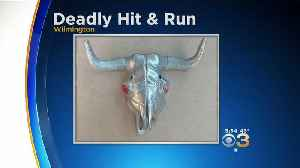 Delaware Police Say This Emblem Fell Off Car In Deadly Hit-And-Run [Video]
