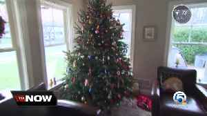 Properly dispose of your Christmas tree to prevent fires [Video]