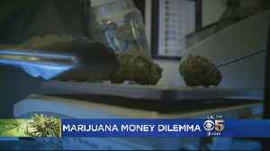 Report Dashes Hopes For State-Backed Bank For Pot Industry In California [Video]