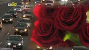 The Scent of a Rose Might Have the Power to Significantly Reduce Car Accidents [Video]