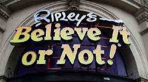 Bruce Campbell Will Host 'Ripley's Believe It or Not!' Show [Video]