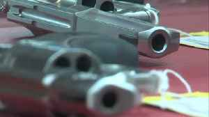Over 200 new laws start in Illinois...some of them involve guns [Video]