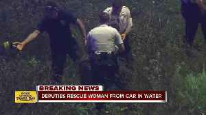 Deputies rescue woman trapped in car in water-filled ditch [Video]