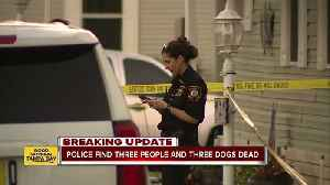 Tarpon Springs police find 3 people, 3 dogs dead inside home [Video]
