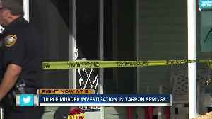 Police: 3 adults, 3 dogs found dead inside Tarpon Springs home [Video]