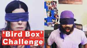 What Is The 'Bird Box' Challenge? [Video]