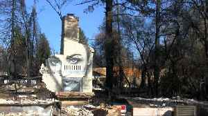 Artist paints mural on ruins of Paradise home [Video]