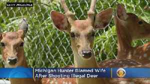 Hunter Caught With Illegal Deer Blames Wife [Video]