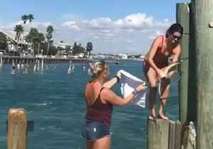 Woman Climbs Pier to Free Seagull From Plastic Wound Around Its Neck [Video]