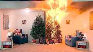 Preventing Christmas Tree Fires [Video]