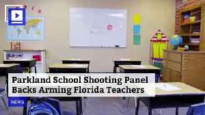 Parkland School Shooting Panel Backs Arming Florida Teachers [Video]