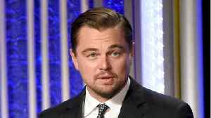 Leonardo DiCaprio Testified In Front Of US Grand Jury [Video]