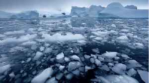 Scientists Baffled By Antarctic Sea Ice's Rapid Disappearance [Video]
