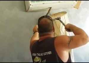 Snake Catcher Wrangles Tiger Snake From Air-Conditioning System [Video]