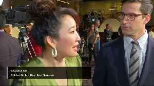 News video: The red carpet rolls out for the Golden Globes
