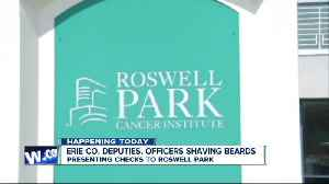 Erie County Sheriff's Office to present Roswell Park Cancer Institute with money raised from No-Shave November [Video]