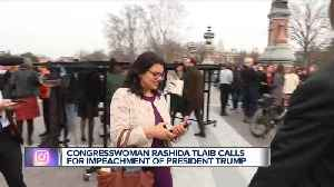 Rep. Rashida Tlaib: 'We're gonna impeach the motherf***er.