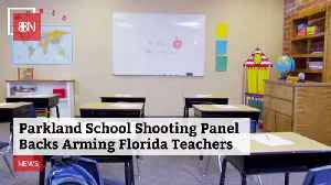 Should Florida Teachers Get Guns: This Panel Thinks So [Video]