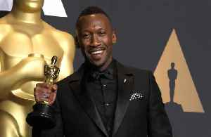 Mahershala Ali wins first Golden Globe [Video]