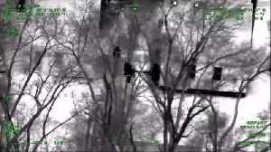 MSP helicopter night cam helps nab home invasion suspect [Video]