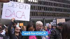Could a Wall-for-DACA Deal Solve Shutdown Impasse? [Video]