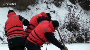 Locals pluck lost dog from icy river in perilous 4hr rescue mission [Video]