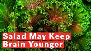 Eating Salad Keeps Brain 11 Years Younger [Video]