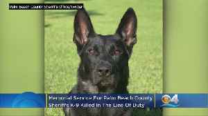 Memorial Thursday For Florida Police K-9 Who Died In Line Of Duty [Video]