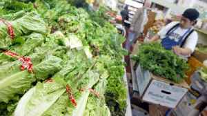 CDC Says E. Coli Outbreak Linked To Romaine Is Over [Video]