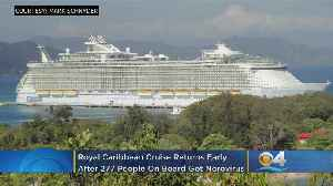 277 Cruise Ship Passengers, Crew Members Hit With Norovirus Outbreak [Video]