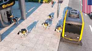 Robot delivery dogs could soon be delivering your packages [Video]