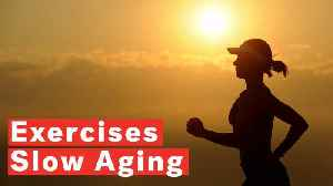 Best Exercises To Slow Aging [Video]